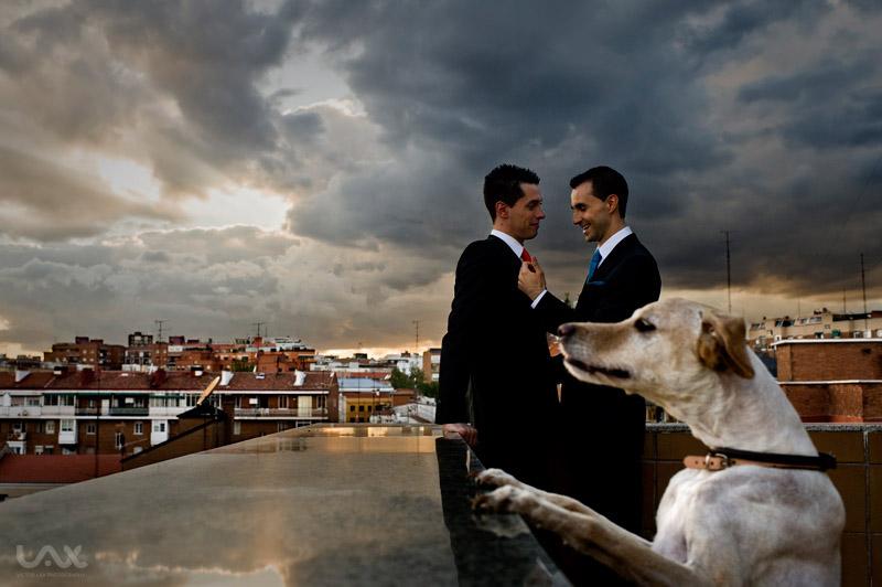 Fotografia de boda gay. Boda Gay